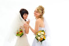 Beautiful brides Stock Image