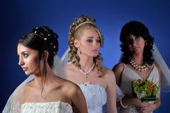 Beautiful brides Stock Photos