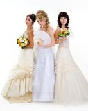 Beautiful brides Royalty Free Stock Photography