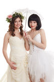 Beautiful brides. Concept of double wedding Royalty Free Stock Photos