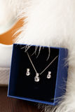 Beautiful brides necklace and earrings in flue gift box. Stock Photography