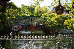 Beautiful bridge over the lake in green park. Beautiful pond and footbridges surrounded with trees and flowers. Stock Photo