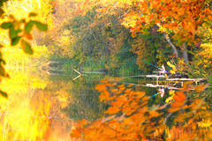 Beautiful bright autumn landscape with trees and a fisherman on a river Royalty Free Stock Images