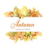 Autumn leaf bright Frame isolated on a white background. Watercolor autumn leaf hand drawn illustration. New autumn. Beautiful bright Autumn leaf Frame isolated stock photos