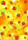 Beautiful bright background Stock Image