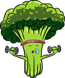 Beautiful bright cartoon broccoli engaged in sports with dumbbells. Organic farm cartoon broccoli vegetables with green stalks and lush heads. Funny cabbage Stock Image