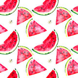 Beautiful bright colorful delicious tasty yummy ripe juicy cute lovely red summer fresh dessert slices of watermelon and bee patte Stock Images