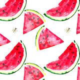 Beautiful bright colorful delicious tasty yummy ripe juicy cute lovely red summer fresh dessert slices of watermelon and bee patte Stock Photo