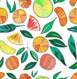 Beautiful bright colorful delicious tasty yummy ripe juicy lovely orange summer autumn dessert slices of oranges and mandarins pat. Tern vector illustration Stock Photo