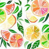 Beautiful bright colorful delicious tasty yummy ripe juicy lovely orange summer autumn dessert slices of oranges and mandarins pat. Tern vector illustration Royalty Free Stock Image