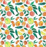 Beautiful bright colorful delicious tasty yummy ripe juicy lovely orange summer autumn dessert slices of oranges and mandarins pat. Tern vector illustration Stock Photography