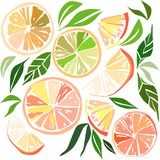Beautiful bright colorful delicious tasty yummy ripe juicy lovely orange summer autumn dessert slices of oranges and mandarins pat Stock Photography