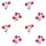 Beautiful bright cute elegant tender gentle lovely floral colorful wildflowers pink and red roses with buds and leaves bouquets Royalty Free Stock Images