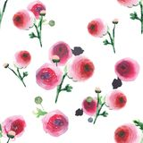 Beautiful bright cute elegant tender gentle lovely floral colorful wildflowers pink and red roses with buds and leaves bouquets di Stock Photography
