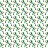 Beautiful bright cute green tropical lovely wonderful hawaii floral herbal summer pattern of a palm trees watercolor hand sketch Royalty Free Stock Photos