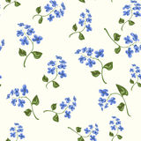 Beautiful bright floral seamless pattern Royalty Free Stock Image