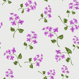 Beautiful bright floral seamless pattern Royalty Free Stock Photography