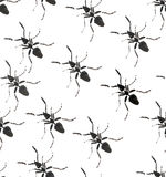 Beautiful bright graphic abstract cute lovely diagonal pattern of black ants watercolor Stock Image