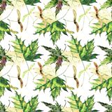 Beautiful bright graphic tender herbal floral autumn green and yellow maple leaves pattern watercolor hand illustration Royalty Free Stock Photo