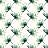 Beautiful bright green tropical wonderful hawaii floral herbal summer diagonal pattern of a palms watercolor. Hand illustration Royalty Free Stock Photos