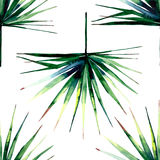 Beautiful bright green tropical wonderful hawaii floral herbal summer horizontal pattern of a palms watercolor Royalty Free Stock Photography
