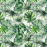 Beautiful bright green tropical wonderful hawaii floral herbal summer pattern of palms watercolor. Hand illustration Stock Photo