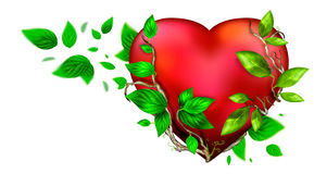 Beautiful bright heart of red color. With green leaves floating around it isolated over white background. Greeting card design element for Saint Valentine`s Day vector illustration