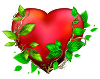 Beautiful bright heart of red color Stock Image