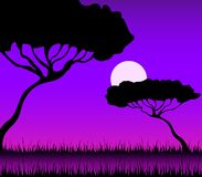 Beautiful bright landscape. Of a decline in a summer safari royalty free illustration