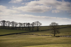 Beautiful bright landscape image of Peak District on sunny Sprin Stock Images