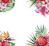 Beautiful bright lovely colorful tropical hawaii floral herbal summer frame of tropical flowers hibiscus orchids and palms leaves Stock Photos