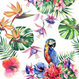 Beautiful bright lovely colorful tropical hawaii floral herbal summer pattern of tropical flowers hibiscus and orchids, palms leav. Es and colorful tropical Royalty Free Stock Photography