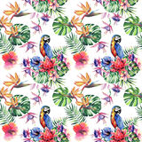 Beautiful bright lovely colorful tropical hawaii floral herbal summer pattern of tropical flowers hibiscus and orchids, palms leav Stock Photos