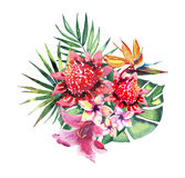 Beautiful bright lovely colorful tropical hawaii floral herbal summer pattern of tropical flowers hibiscus orchids and palms leave. S watercolor hand sketch Stock Photos