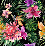 Beautiful bright lovely colorful tropical hawaii floral herbal summer pattern of tropical flowers hibiscus orchids and palms leave. S on black background pattern Stock Photography