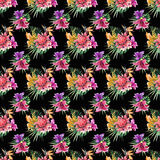 Beautiful bright lovely colorful tropical hawaii floral herbal summer pattern of tropical flowers hibiscus orchids and palms leave. S on black background Royalty Free Stock Image