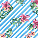 Beautiful bright lovely colorful tropical hawaii floral herbal summer pattern of tropical flowers hibiscus orchids and palms leave Stock Photography
