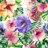 Beautiful bright lovely colorful tropical hawaii floral herbal summer pattern of tropical flowers hibiscus and palms leaves waterc. Olor hand sketch Stock Photo