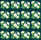 Beautiful bright lovely sophisticated white peonies pattern on dark blue background watercolor. Hand sketch Stock Images