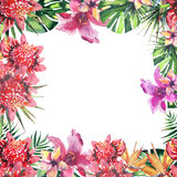 Beautiful bright lovely wonderful green tropical hawaii floral herbal summer colorful frame of tropical flowers and palms leaves w Royalty Free Stock Photos
