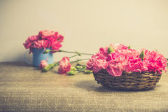 Beautiful bright pink carnation petals on Small basket. Vintge image style Stock Images