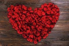 Beautiful bright red rose petals on wooden background. Happy valentines day oliday sales concept. Romantic gesture, love confession, happy valentines day Royalty Free Stock Photography