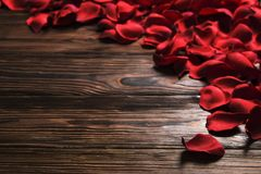 Beautiful bright red rose petals on wooden background. Happy valentines day oliday sales concept. Romantic happy valentines day greeting card / women`s day Stock Images