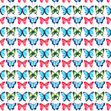 Beautiful bright sophisticated magnificent wonderful tender gentle spring tropical green red blue purple butterflies pattern Royalty Free Stock Photography
