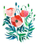 Beautiful bright spring composition of red poppies with green leaves and heads watercolor. Hand illustration Royalty Free Stock Photo