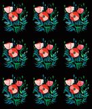 Beautiful bright spring floral pattern of red poppies with green leaves and heads on black background watercolor. Beautiful bright spring floral pattern of red Royalty Free Stock Photo