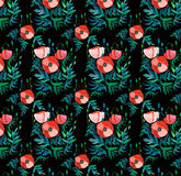 Beautiful bright spring floral pattern of red poppies with  green leaves and heads on black background watercolor. Hand sketch Stock Photography