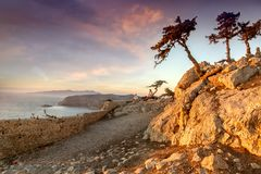 Beautiful sunset landscape, pine trees on a hill overlooking the stock photos