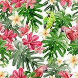 Beautiful bright watercolor pattern with tropical leaves and flowers Plumeria, Hibiscus and Parrot. Royalty Free Stock Photo