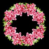 Beautiful, bright watercolor wreath with orchids. Illustration royalty free stock photos